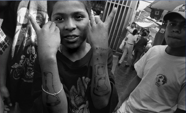 gangs in our society Gangs have direct effects on a community how do gangs affect the the effects of crime on society include feelings of fear that disrupt the population.