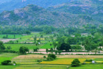 Green_Beds,_farmlands_Indiafinal