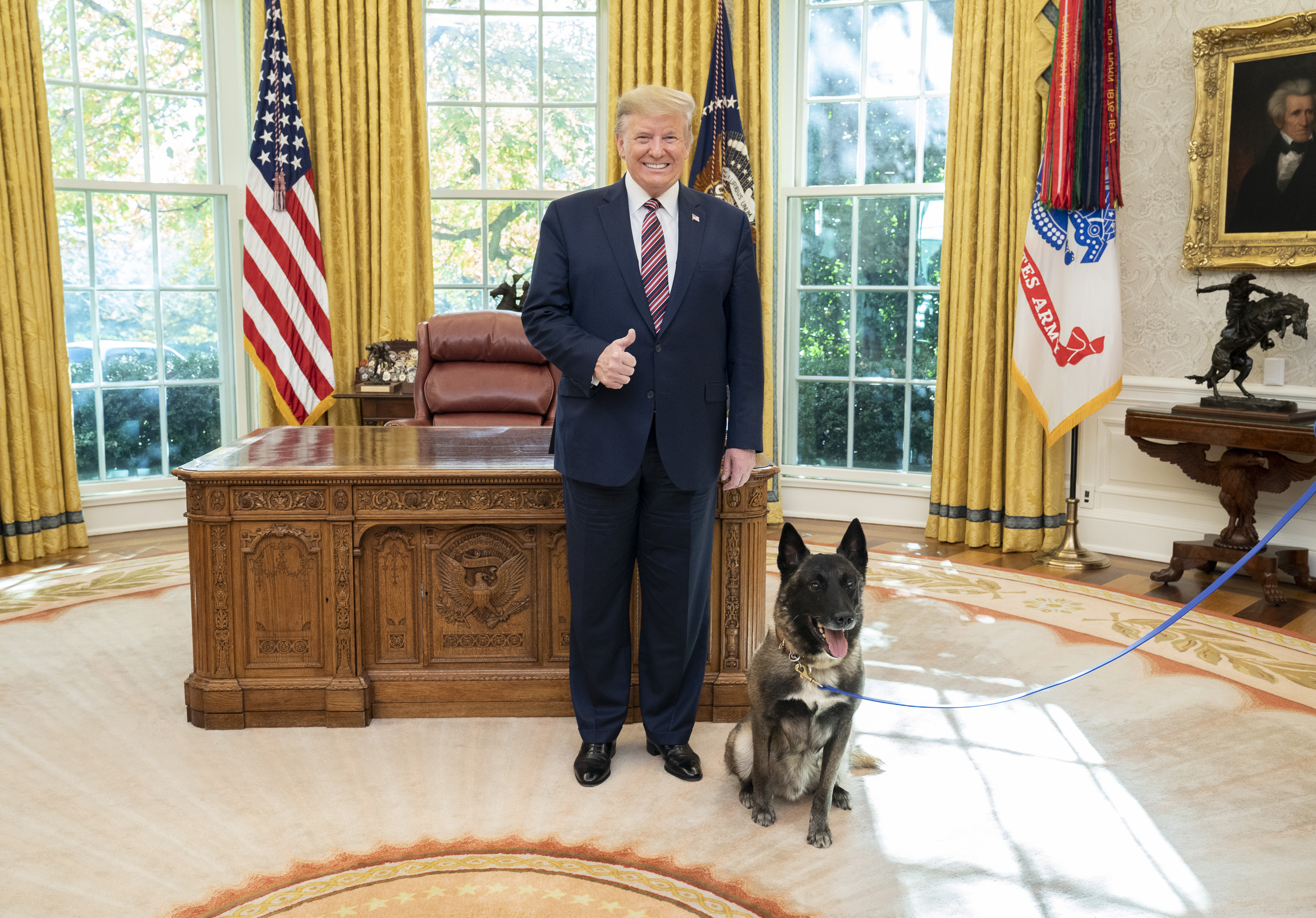 Who Let The Dogs Out Trump S Aversion