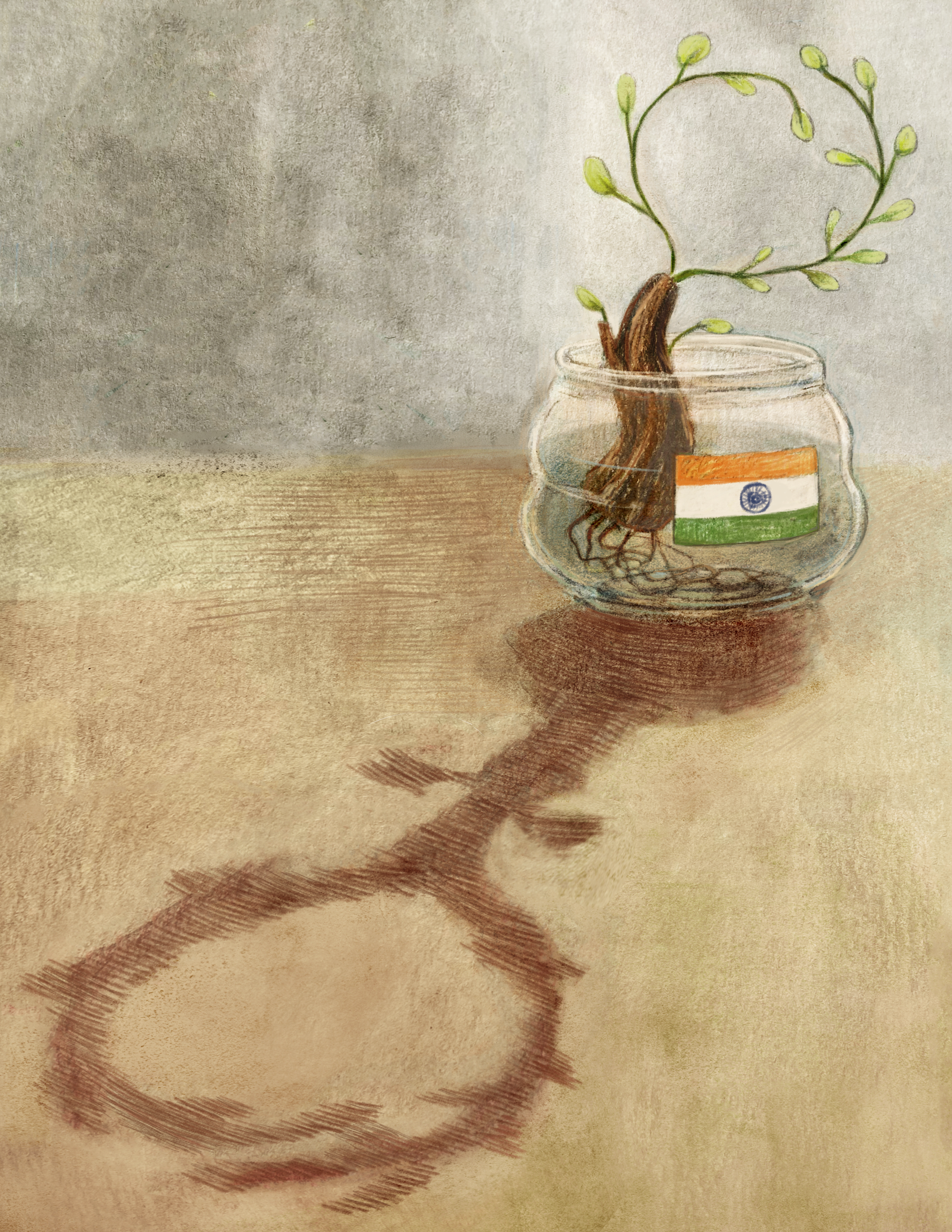 A small plant, contained in a jar with a label of the flag of India, is propagated. Its shadow resembles the female gender symbol.